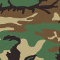 Webbing Color: US Woodland Camo